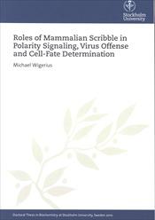 Define Dissertations